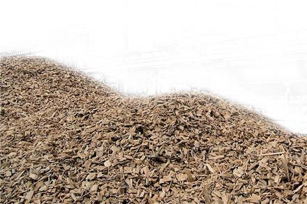 Biomasa olivar y aceite