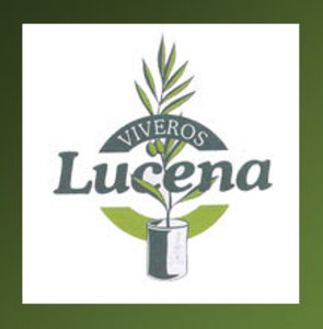 Viveros Lucena